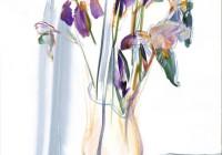 iris-bistes