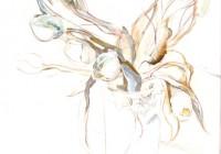 tulipes-dessin-bistes